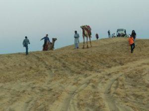 Desert Safari Tour By Srjodhpurtaxiservice